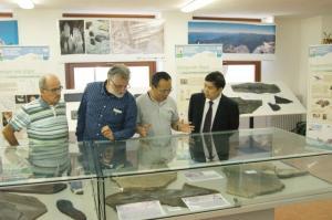 fossili cinesi comunità montana