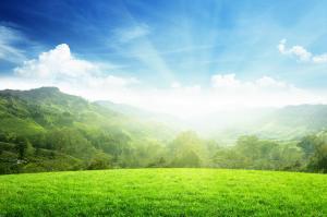 prato verde colline luce sole cielo