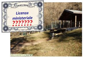 BETULLE LICENZA