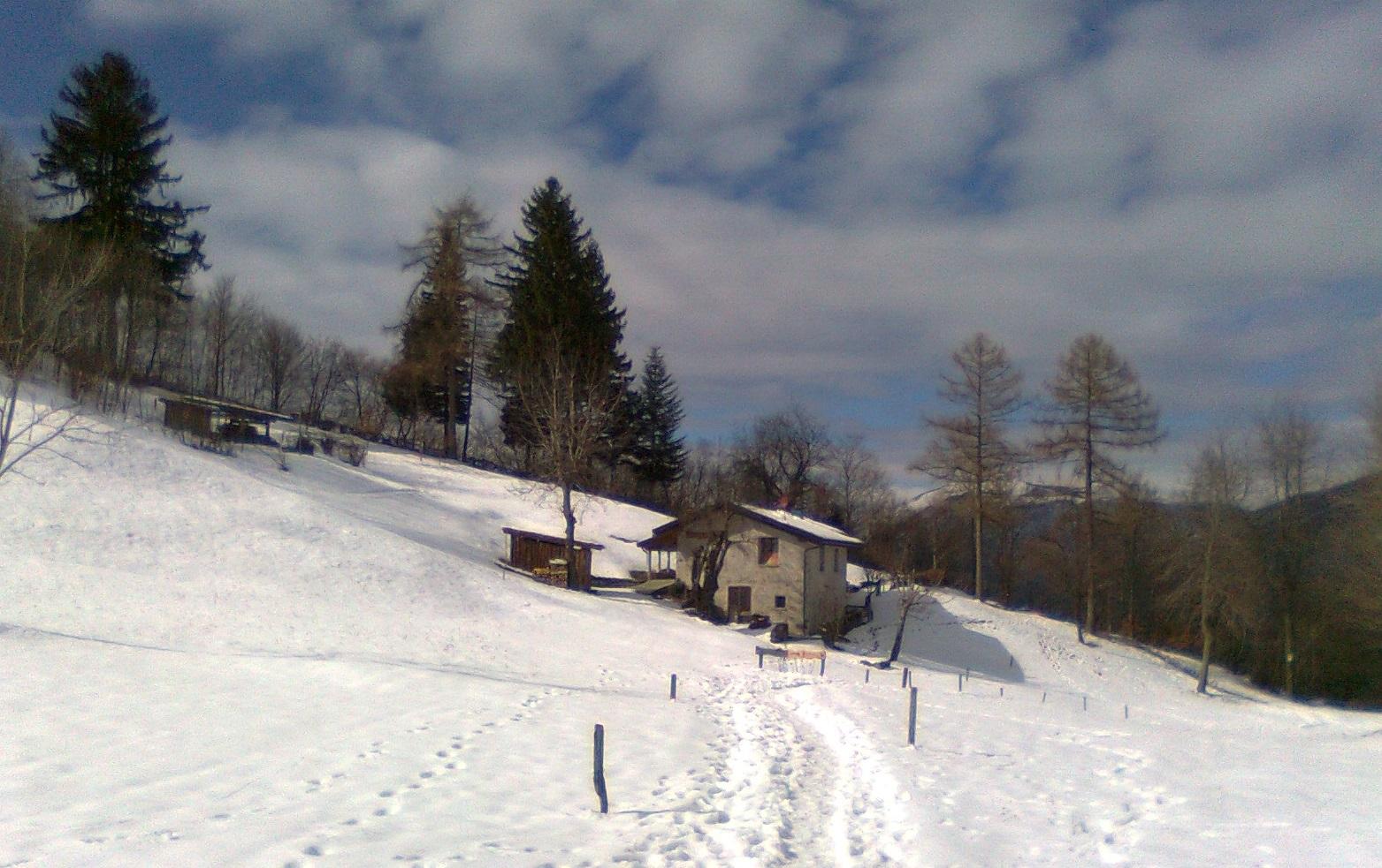 La lettera un escursione marzolina all alpe piattedo for Piani di coperta a 2 piani