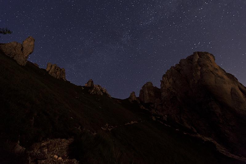 Mare di stelle all'inizio del sentiero delle Foppe poco sotto il Rifugio Rosalba