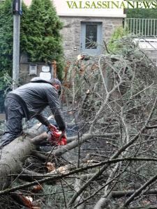uragano-pianta-caduta-via-roma-barzio-1