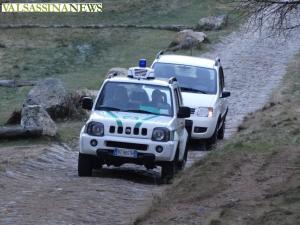 cervi-betulle-polizia-provinciale-freccia-45-6