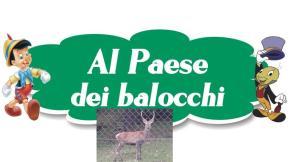PAESE DEI BALOCCHI E CERVO BETULLE