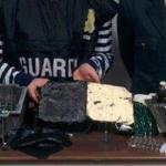 malpensa-droga-guardia-di-finanza-622776