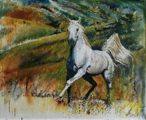 tela combi cavallo