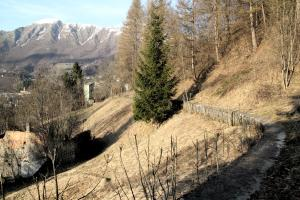 canale guzzi acquedotto 1