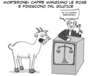 vignetta-capra4