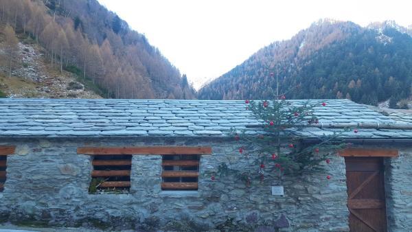 Presepi Alpeggi e LoochPremana (9)