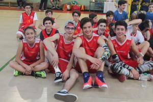 tvt basket (16)