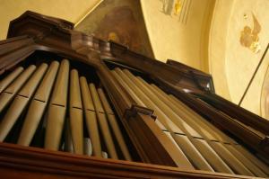 organo-pasturo