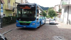 AUTOBUS D35