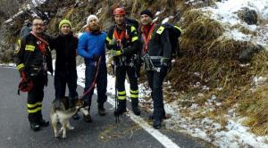 Hurley cane husky - vigili del fuoco pompieri (COP